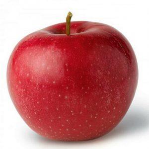 Саженцы яблони Елена